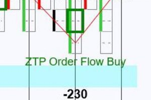 ZoneTraderPro 3 0 Order Flow and Price matching Software Suite